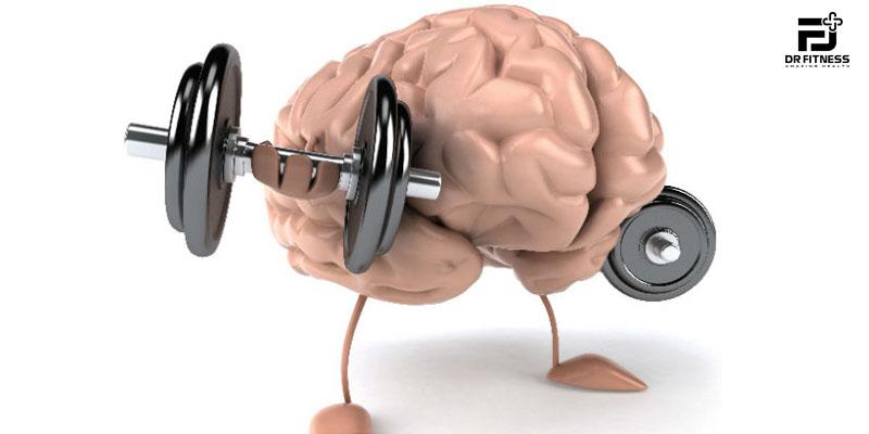 Thể Dục Tác Động Như Thế Nào Đến Não Bộ